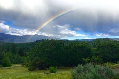 new rainbow.jpg